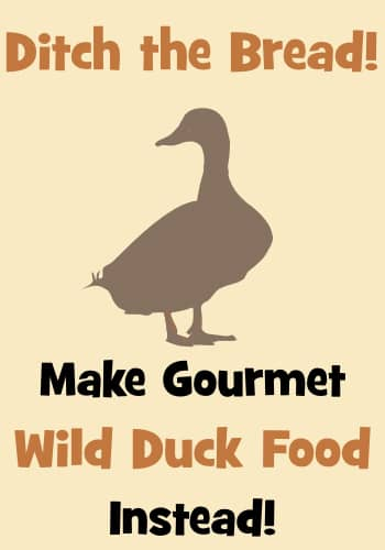 Make HEALTHY duck food