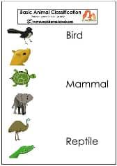 Basic Classification pb