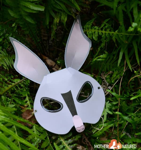 Bilby Mask Printable