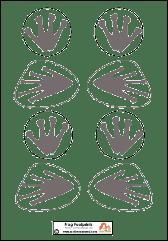 Frog Footprints