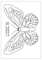 Richmond Birdwing Butterfly Mask