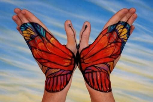 Butterfly1-510x340