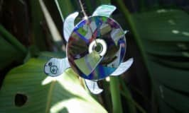 Crafty CD critters