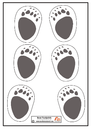 Good footprint template images footprint template for Bear footprints template