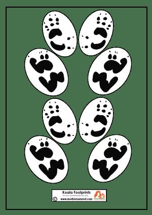 Koala footprints