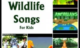 Top wildlife songs for children