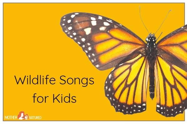 Top wildlife songs your kids will go WILD for!
