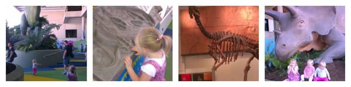 Dinosaur excursion