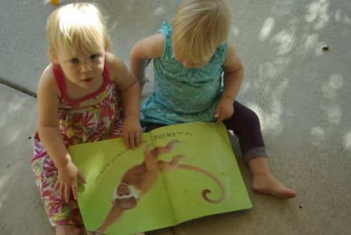 Wildlife Activities your Toddler will Love