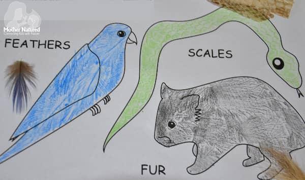 Basic Classification