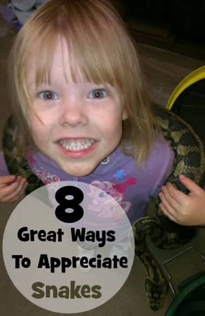 Eight Great Ways to Appreciate Snakes