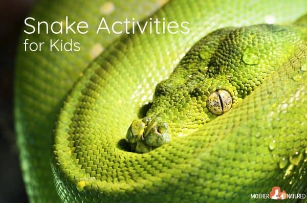 Sssuper Snake Activities for Kids
