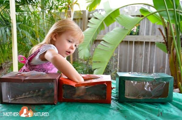 Fur, Feather and Scales Activities for Kids