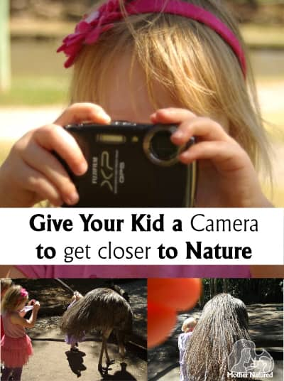 Wildlife Photography for kids