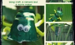 Bring your animal craft to life by making a wildlife video!