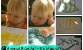 Magical animal rice activity