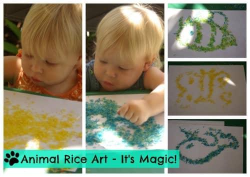 Animal and wildlife rice activity