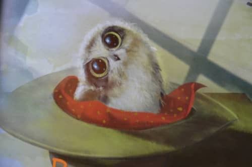boo book owlet