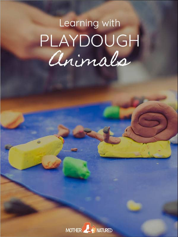 Learning with Playdough Animals