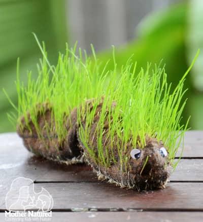 Animal Grass Head