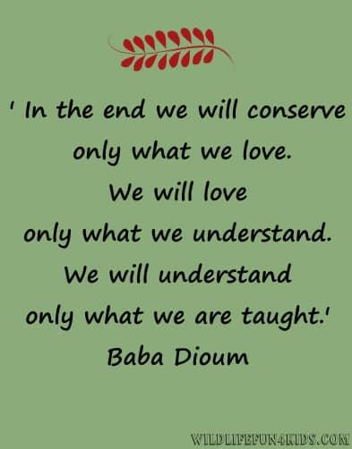 conservation message