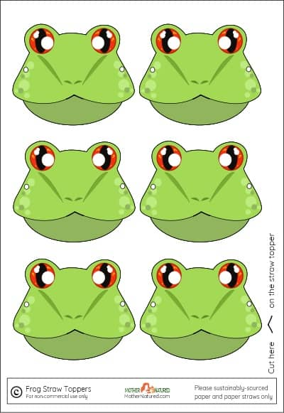 Frog Straw Toppers