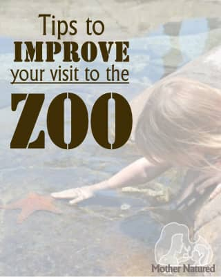 Tips to improve visit to zoo