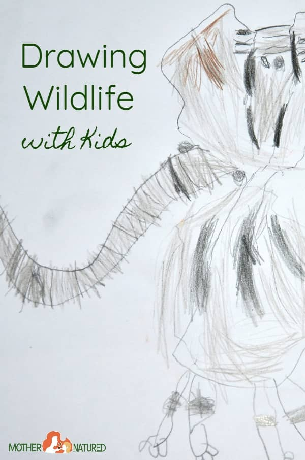 Drawing Wildlife With Kids