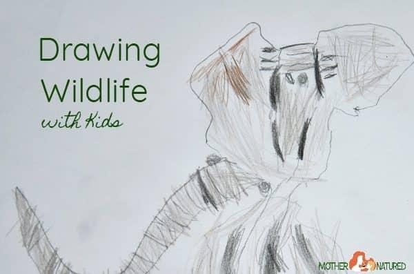 Kids Wildlife Art – Drawing Animals for Kids