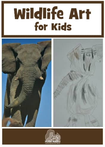 Wildlife Art for Kids
