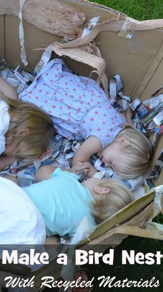 Make a bird's nest our of a cardboard box and recycled materials