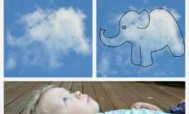 Finding animals in clouds