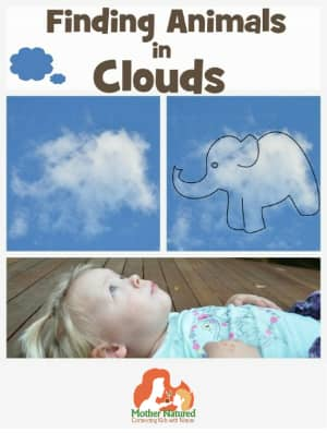 Finding shapes in clouds