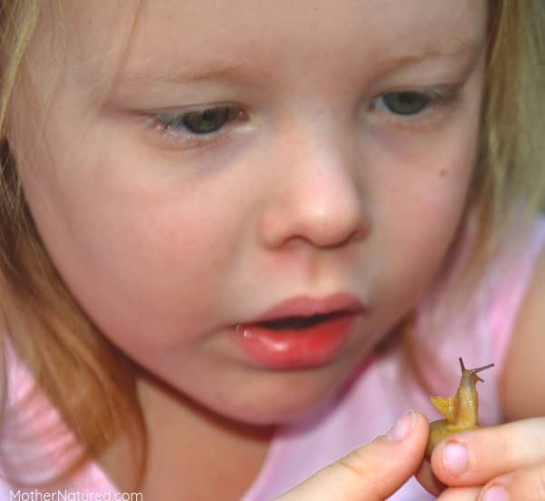 Is it dangerous to hold a snail?