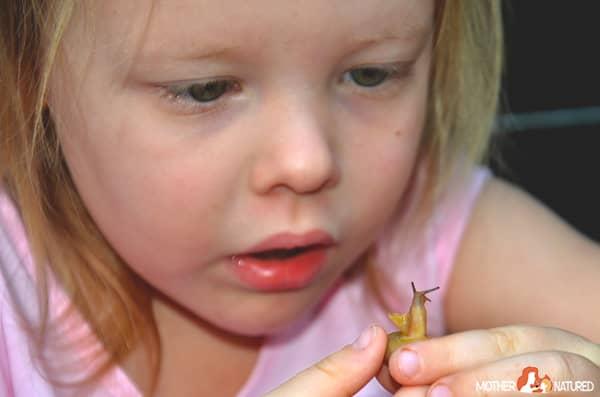 Pet snail for kids