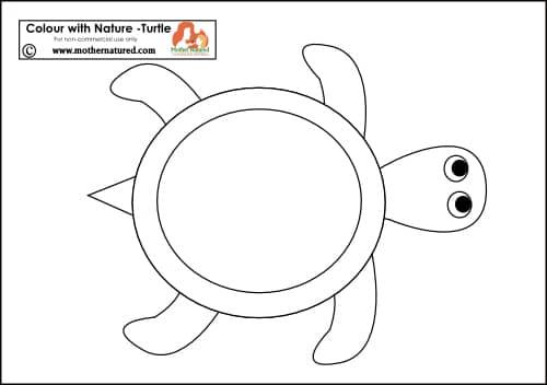 Turtle Printable