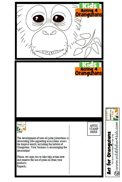Orangutans and palm oil