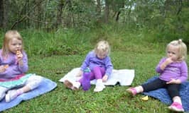 Nature for kids: go for a forest picnic