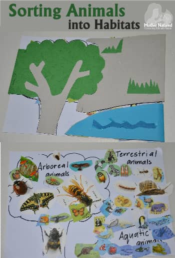 Sorting Animals into Habitats