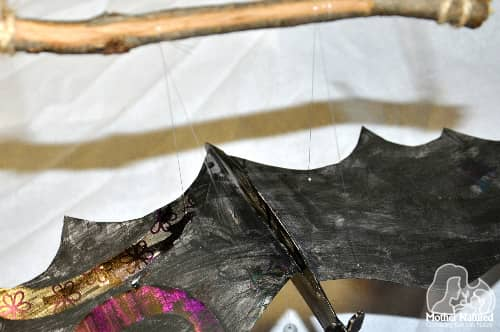 Bat activity