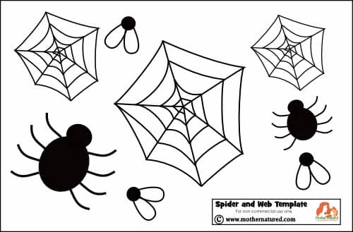 Spider Halloween Treats
