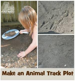 Animal Track Plot