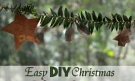 Easy DIY Christmas nature garland