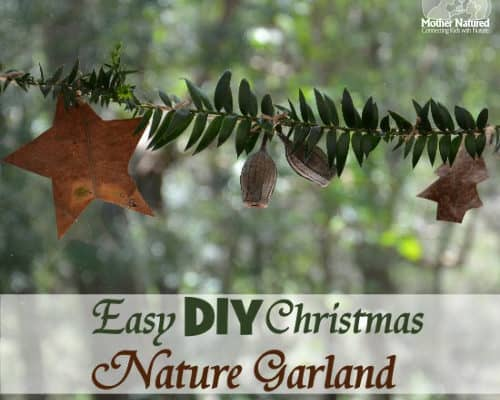 Easy DIY Christmas nature garland