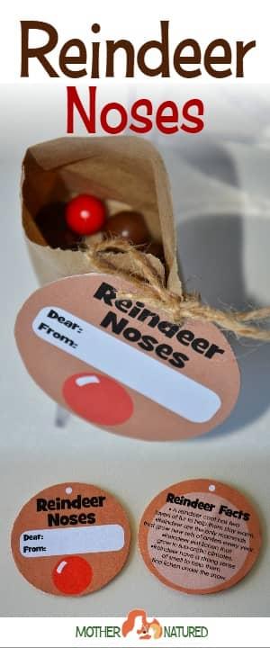 Reindeer noses printable