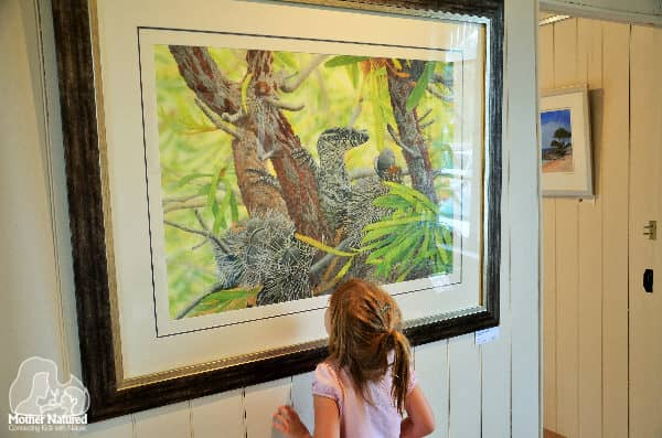 Ten wildlife gallery activities for your next visit