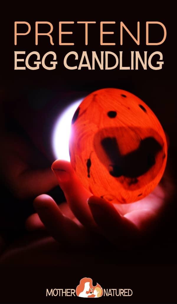 Egg Candling Activity for kids