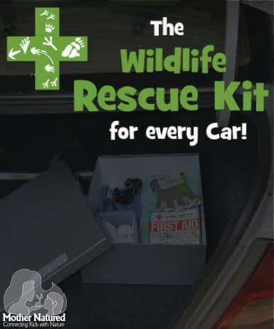 Wildlife Rescue Kit for Every Care