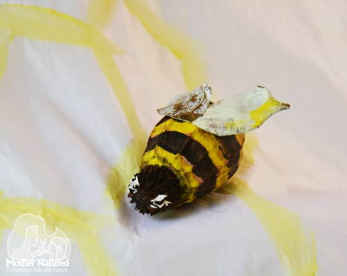 A bumble bee craft your kids will buzz about