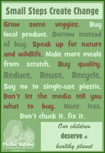 Save The Environment Poster